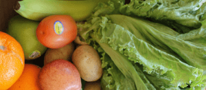 Sign up now to have great-looking, fresh, organic produce and more delivered right to your door!